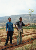 Zakariya and Yousef, Nablus, 2007